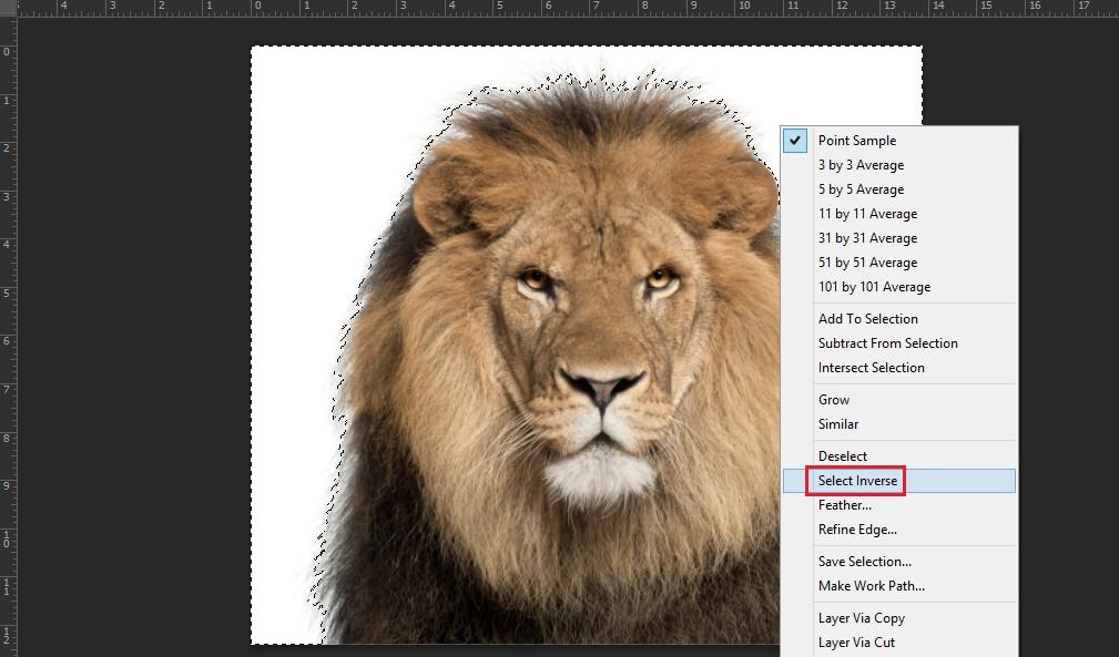 Cách đảo ngược vùng chọn trong Photoshop