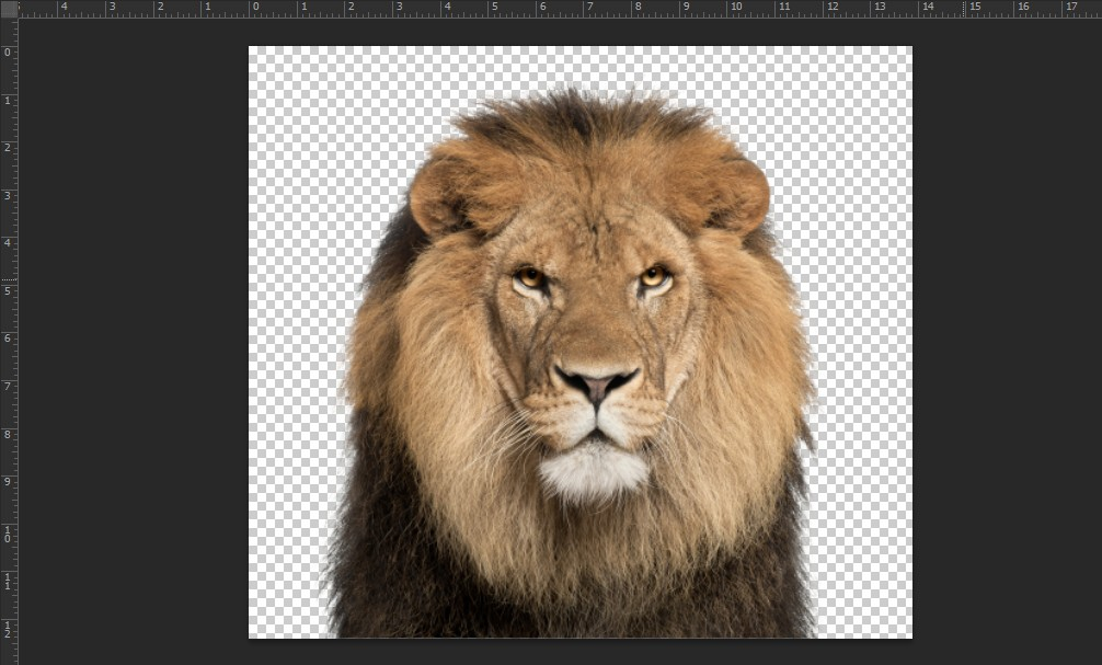 Cách sử dụng Magic Wand Tool trong Photoshop