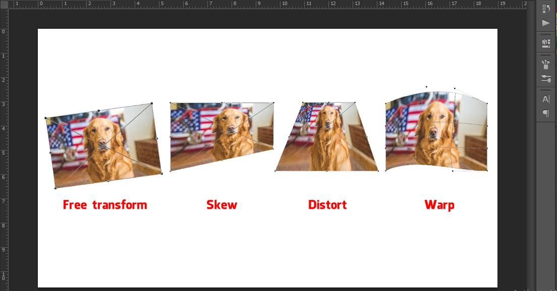 Thay đổi kích thước layer trong photoshop với Transform
