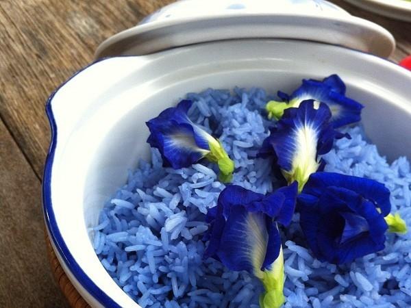 Xôi hoa đậu biếc