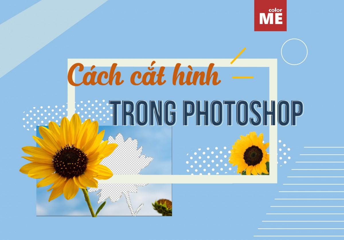 Hướng dẫn cách cắt hình trong Photoshop